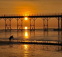 Barking Sunset At Bognor by jakeof