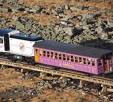 train by Anne Scantlebury