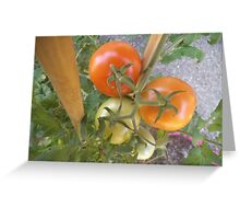 Growing on and on... Greeting Card