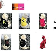 Pet Lifestyle Store- www.puppyphat.com by puppyphat