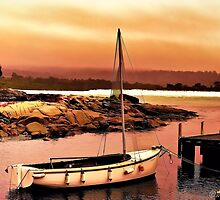 Bay of Fires 5 by wallarooimages