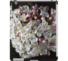 Moody Spring iPad Case/Skin