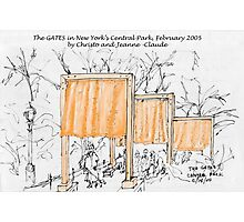 2005: The Gates in Central Park Photographic Print