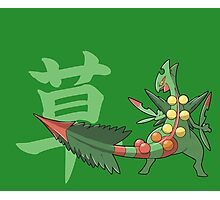 Sceptile With Grass Kanji Photographic Print
