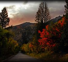 Autumn on the Alpine Loop by Ryan Houston