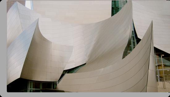 Walt Disney Concert Hall 2 by Robin Fortin IPA