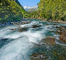 Just Another New Zealand Stream by Neil