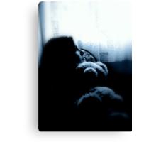 Enter Light, Exit Night Canvas Print