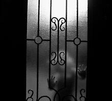 Through a glass darkly....................  by Jacq Wilson