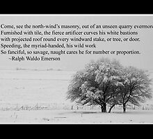 Winter Poem by Ryan Houston