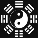 Yin Yang, I Ching, Pure & simple, WHITE on BLACK by TOM HILL - Designer