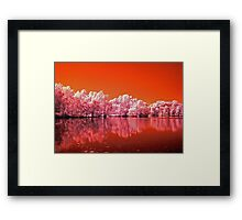 Tree's On Mars Framed Print