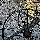 Wagon Wheels II by sparrowhawk