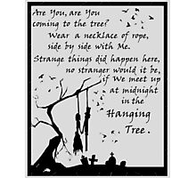 Song by Katniss - HG Photographic Print