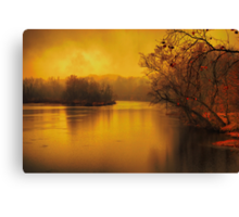 River of thought Canvas Print
