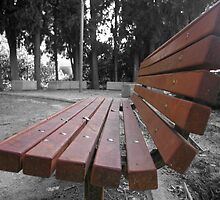 Bench by Lior Goldenberg
