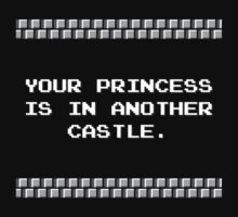 Your Princess is in Another Castle by TheShirtYurt
