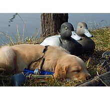 """Resting before """"The Hunt"""" Photographic Print"""
