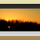 The Last Sunrise of 2007 (framed for wall art/prints) by TerriRiver