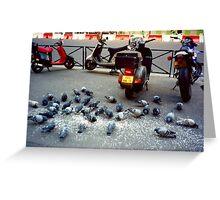 Parisian Pigeon Party, Spring 2000 Greeting Card