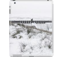 Winter Dam iPad Case/Skin