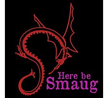 Here be Smaug - Red & Pink, for Black T-Shirt Photographic Print