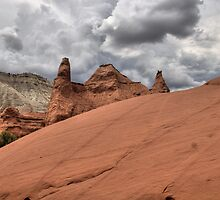 Pertified Sand Dune by EvaMcDermott