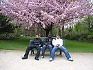 The Blossom Boys by coffeebean