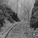 Desolate Tracks by Jason Leshem