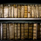 Bookshelf, Prague by rogerjporter