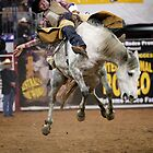 Minutes in Australian Rodeo by Barrie Collins