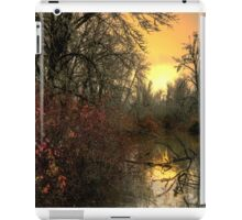 A Reflection of Life iPad Case/Skin