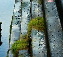 Thompson dock by imagegrabber