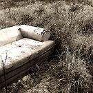 Abandon by Taylor Jury
