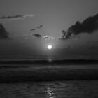 Black and White Sunrise by Jenn  Dixon