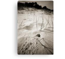 Sawtell Beach Canvas Print