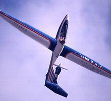 Motor Glider @ Avalon Airshow, Victoria, Australia 2005 by muz2142