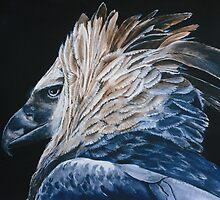Harpy Eagle *Traditional Art in Watercolor and Guache* by deborah zaragoza