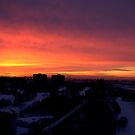 First Sunset of 2008: all the best everyone by Larry Llewellyn
