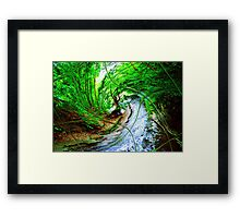 Willow Wizard ~ Commanding the Wave Framed Print