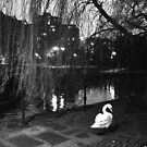 Swan Lake by chancla