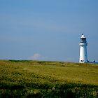 Flamborough Head Light House by Andrew Dunwoody