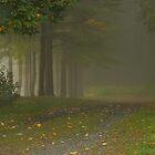 Misty Morn At Merrill Creek by Pat Abbott