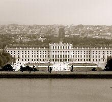 City of Vienna by Lynnrmorris