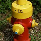 Fire Hydrant by Andrew Dunwoody