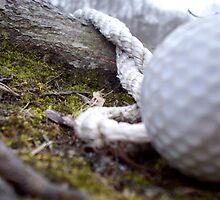 gone golfing by antwilliams