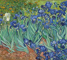 Vincent van Gogh - Irises - 1889 by forthwith