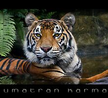 Sumatran Karma by Graham Jones
