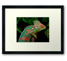 Multiple Personality Disorder Framed Print