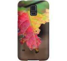 Yellow And Red Maple Leaf In Autumn | Middle Island, New York  Samsung Galaxy Case/Skin